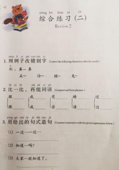 Interactive worksheet 综合练习