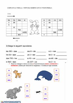 Interactive worksheet Metri