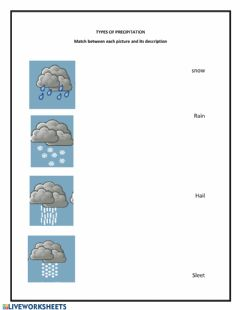 Interactive worksheet Types of Precipitation