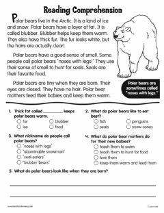 Ficha interactiva Reading Comprehension: Polar Bear