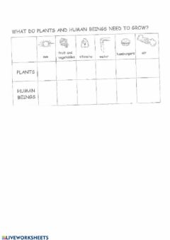 Interactive worksheet What does a plant need to grow