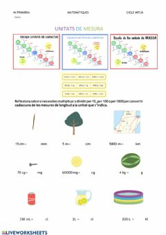Interactive worksheet Unitats de mesura