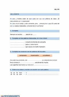 Interactive worksheet mp,mb
