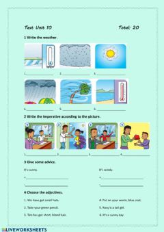 Interactive worksheet Test Unit 10 (Family and Friends 2)