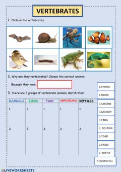 Interactive worksheet Vertebrates