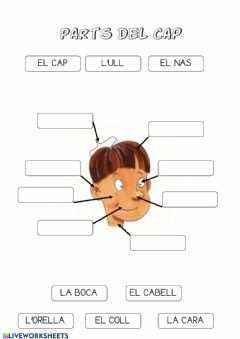 Interactive worksheet Les parts del cap