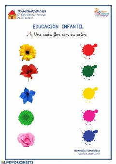 Interactive worksheet Los colores - flores