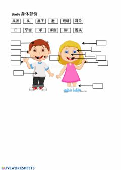 Interactive worksheet Body Match