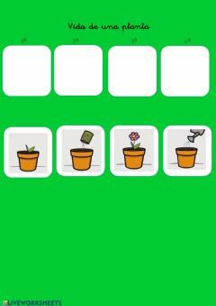 Interactive worksheet Vida de una planta