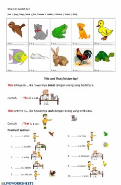 Interactive worksheet My Pets, This and That