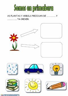 Interactive worksheet Somos en primabera1