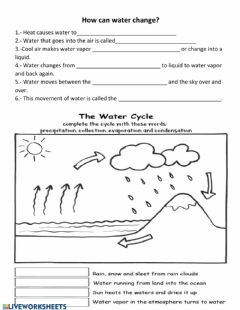 Interactive worksheet water cycle