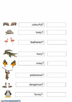 Ficha interactiva Short answers to be and describing animals