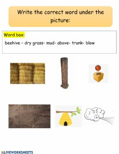 Interactive worksheet Different kinds of houses part1