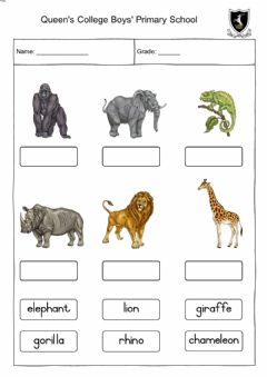 Interactive worksheet Wild animals - drag and drop