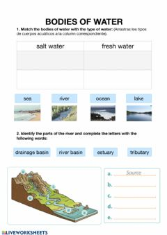 Interactive worksheet Bodies of water easy