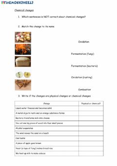 Interactive worksheet Chemical changes