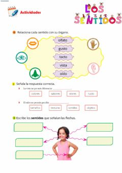 Interactive worksheet Los sentidos