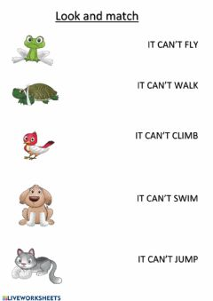 Interactive worksheet Animal Accidents