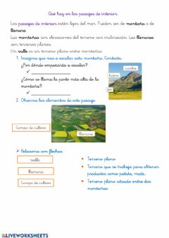 Interactive worksheet Paisajes 2