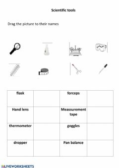 Interactive worksheet Scientific tools