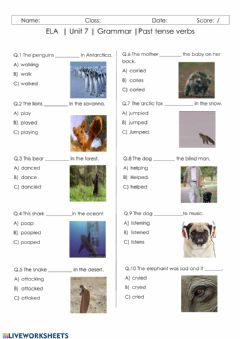 Interactive worksheet Unit 7 - Grammar: Past Tense