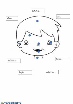 Interactive worksheet Aurpegia