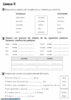 Interactive worksheet Lengua II