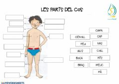 Interactive worksheet Parts del cos
