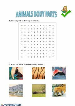 Interactive worksheet Parts of the body (animals)