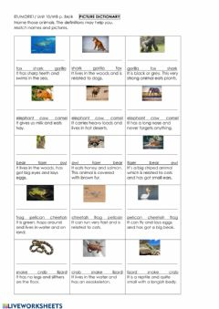 Interactive worksheet E1 Picture Dictionary: Animals