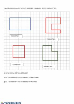 Interactive worksheet Perimetro su carta a quadretti