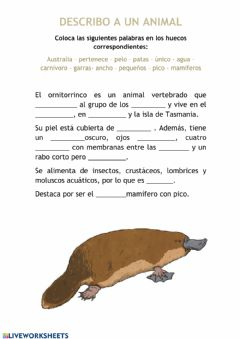 Interactive worksheet La descripción de animales