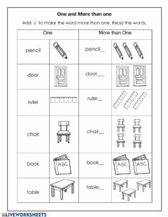 Interactive worksheet More than One