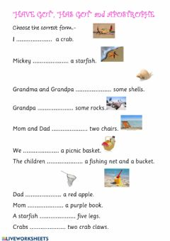 Interactive worksheet HAVE GOT and APOSTROPHES