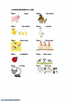 Ficha interactiva There is there are with animals