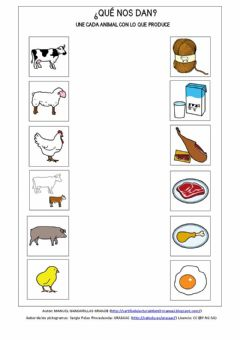 Interactive worksheet Qué nos da cada animal