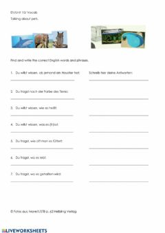 Interactive worksheet E1 Q&A Talking about pets (German-English)