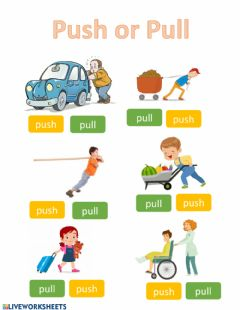 Interactive worksheet Push or Pull