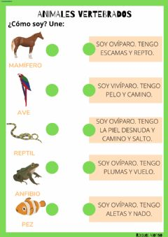 Interactive worksheet Animales vertebrados