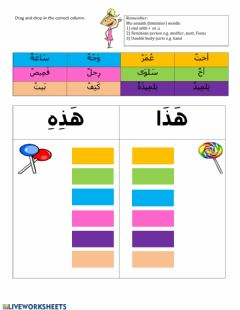 Interactive worksheet Haza-Hazihi -with masculine & feminine words