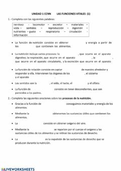 Interactive worksheet Funciones vitales 1