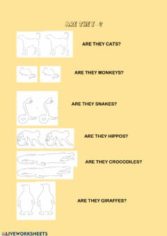 Interactive worksheet Animals - are they?