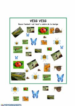 Interactive worksheet Veig veig