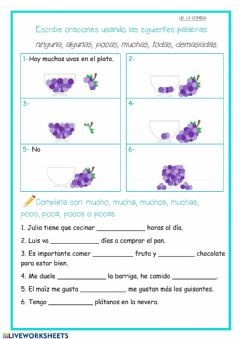 Interactive worksheet Indefinidos