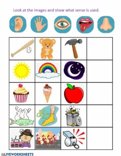 Interactive worksheet Pract nueva 2 FIVE SENSES