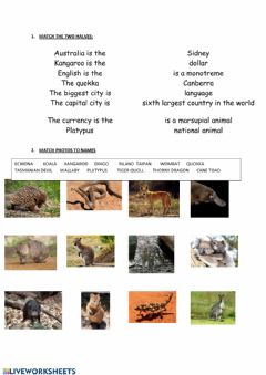 Interactive worksheet Australian facts and animals