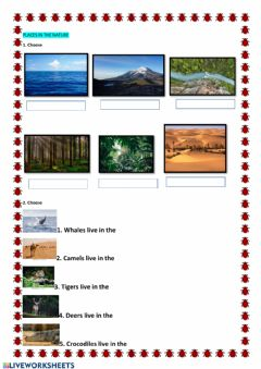 Interactive worksheet Wild animals places qhere they live