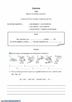 Interactive worksheet Think about CAN - CAN'T