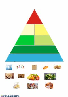 Interactive worksheet Piramide alimenticia